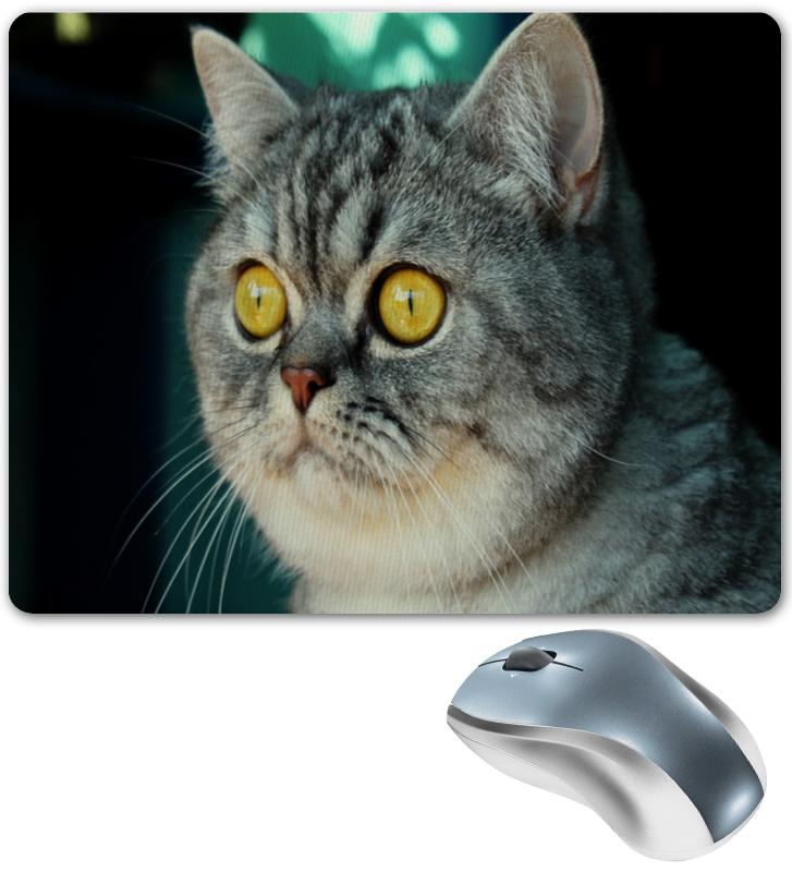 Коврик для мышки Printio Кошка коврик для мышки printio кошка в лучах ссср