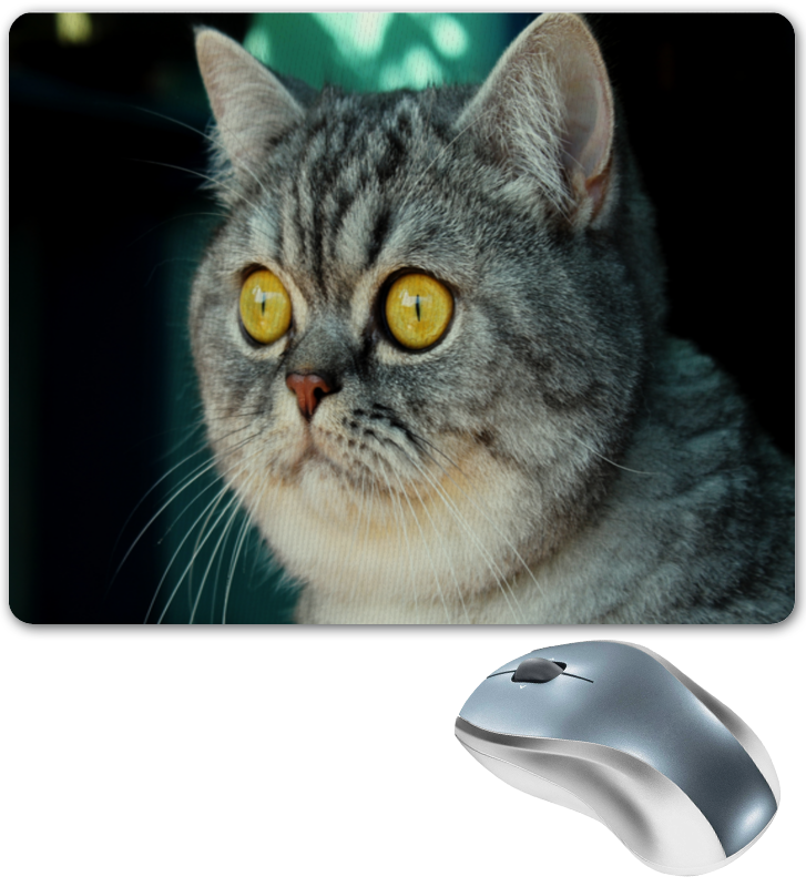 Коврик для мышки Printio Кошка коврик для мышки printio серая кошка page 1
