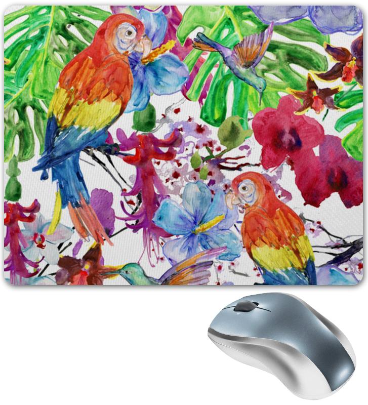 Printio Попугаи попугаи для домашнего содержания