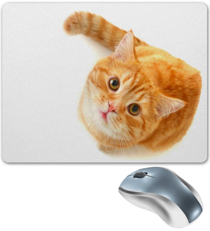 Коврик для мышки Printio Рыжий кот коврик для мышки printio кот сыр и мышка