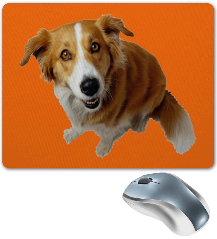 Printio Рыжий пес коврик для мышки printio пес летчик