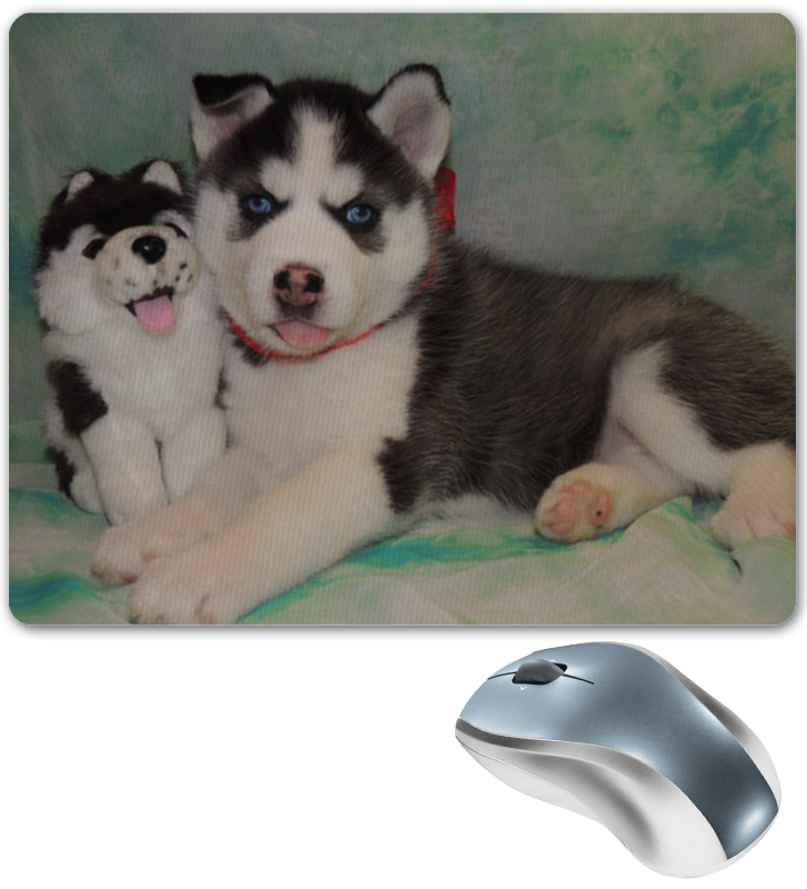 Коврик для мышки Printio Сибирский хаски мягкие игрушки hansa собака породы сибирский хаски 40 см
