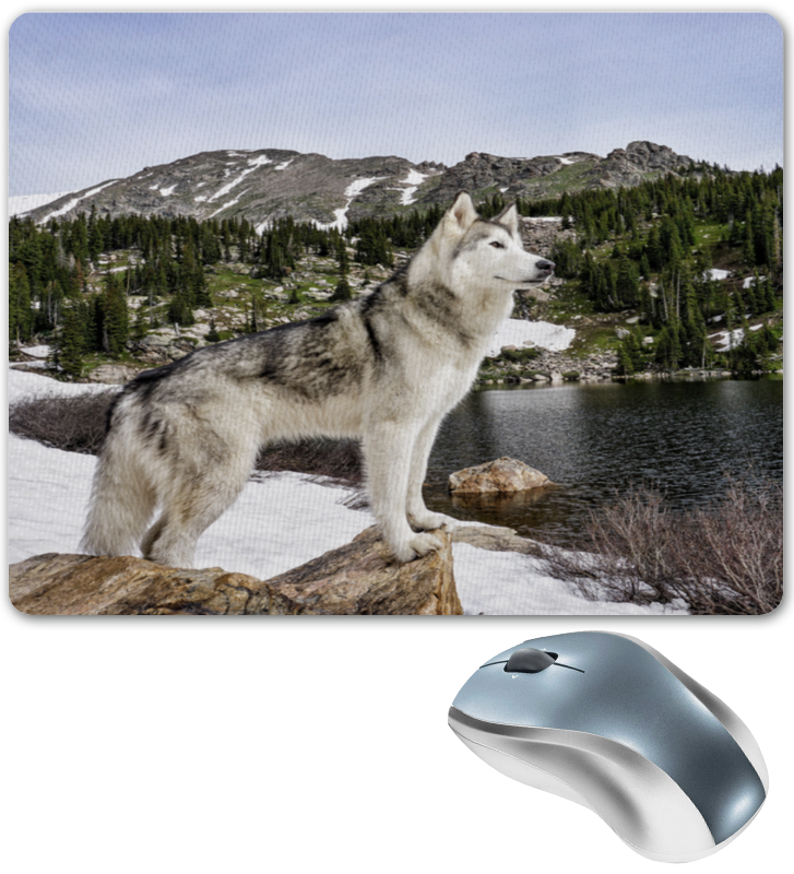 Коврик для мышки Printio Волк в горах коврик для мышки printio река в горах