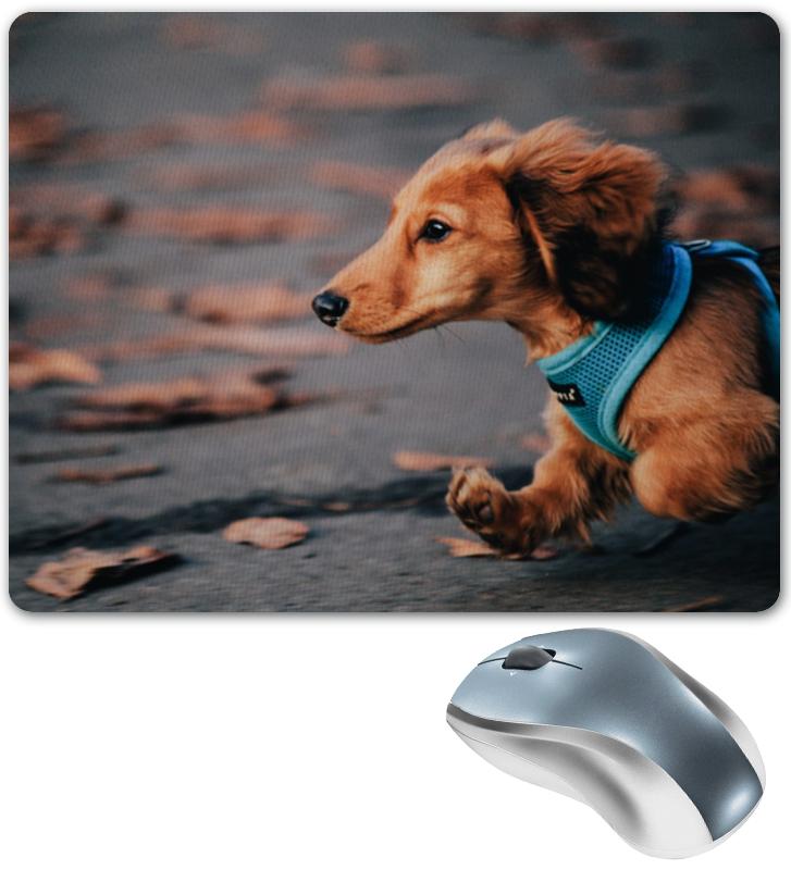 Коврик для мышки Printio Dog run вентилятор радиатора run quickly w211 e200 e230 e240 e280 e300 e320