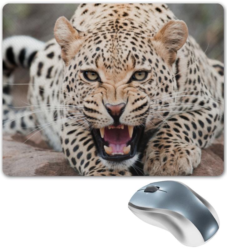 Коврик для мышки Printio Леопард