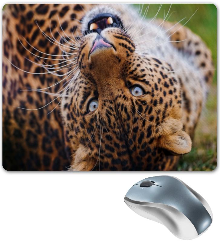 Коврик для мышки Printio Хищник крепление отвода для лука interloper хищник co 011005bb
