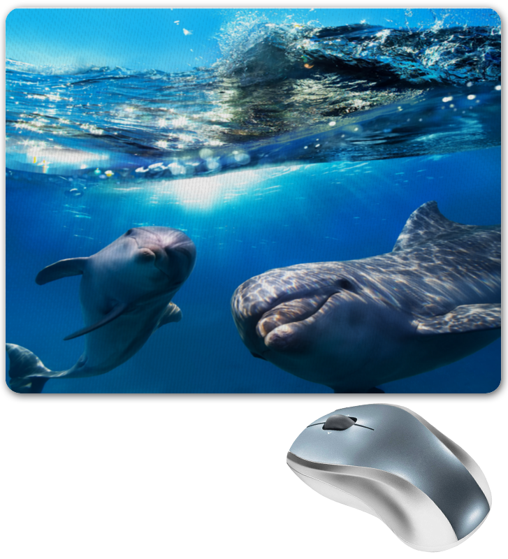Коврик для мышки Printio Дельфины коврик для мышки printio дельфины