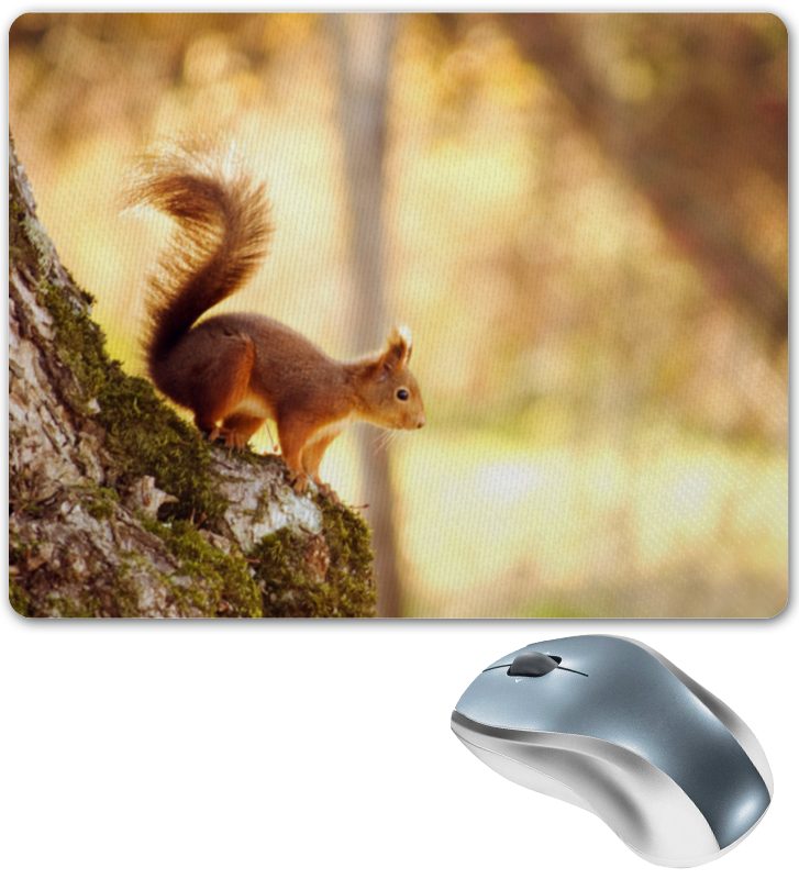 все цены на Коврик для мышки Printio Белочка онлайн