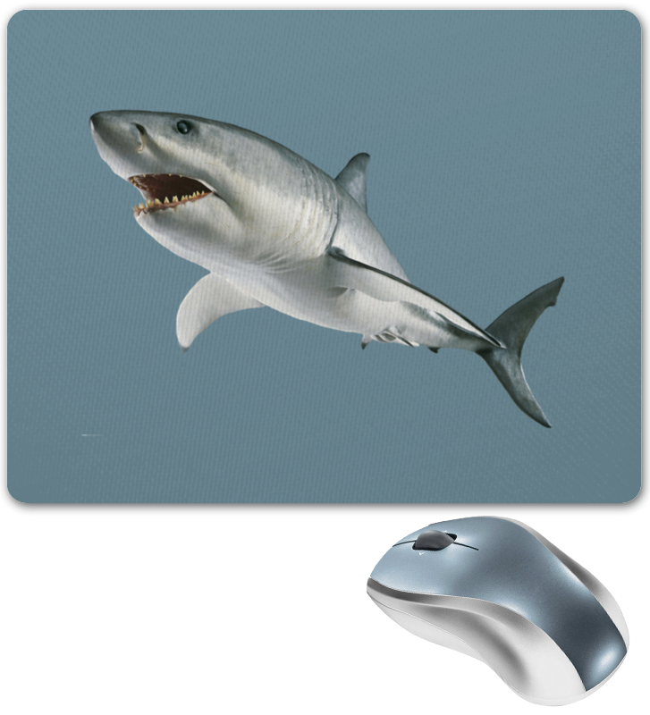 Printio Атака хищной акулы. коврик для мышки printio серая кошка