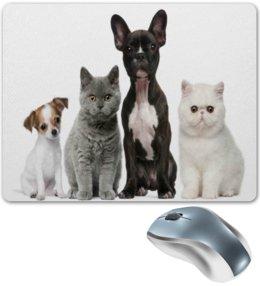 """Коврик для мышки """"Собаки и кошки"""" - животные, собаки, кошки, коты, пес"""