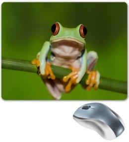 """Коврик для мышки """"Лягун"""" - лягушка, жаба, природа, животные, пейзаж"""