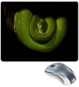 """Коврик для мышки """"Зеленая древесная змея"""" - змея, алина макарова, рептилия"""