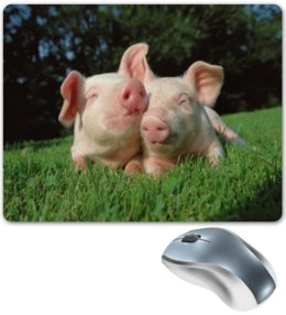 """Коврик для мышки """"Поросята"""" - животные, природа, свинья, поросенок, год кабана"""