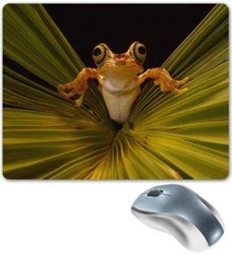 """Коврик для мышки """"Лягушка"""" - лягушка, жаба, природа, животные, пейзаж"""