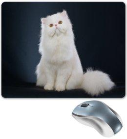 """Коврик для мышки """"Белый кот"""" - кот, кошка, животные, коты"""