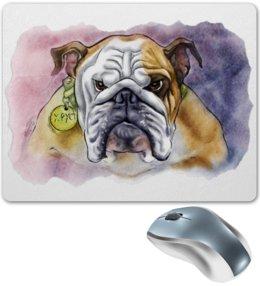 """Коврик для мышки """"Английский Бульдог"""" - иллюстрация, собаки, авторское, бульдог, породы"""