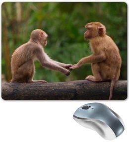 """Коврик для мышки """"Обезьяны"""" - животные, обезьяны, мартышки"""