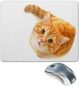 """Коврик для мышки """"Рыжий кот"""" - коты, котики, морда, cat, кошка"""