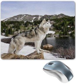 """Коврик для мышки """"Волк в горах"""" - животные, природа, горы, пейзаж, волк"""