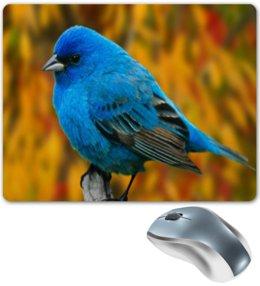 "Коврик для мышки ""Птичка"" - животные, птица, птицы, angry birds, энгри бердз"