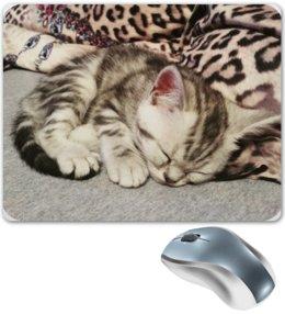 "Коврик для мышки ""Спящий котик"" - кот, котенок, спящий котик"