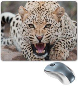 """Коврик для мышки """"Леопард"""" - взгляд, леопард, пасть, зубы, джунгли"""