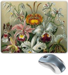 """Коврик для мышки """"Орхидеи (Orchideae, Ernst Haeckel)"""" - картина, орхидея, день матери, красота форм в природе, эрнст геккель"""