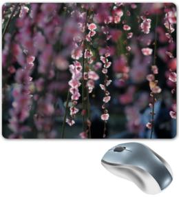 "Коврик для мышки ""цветущая сакура"" - любовь, цветы, солнце, красота, япония, japan, сакура, cherry blossom, sakura"