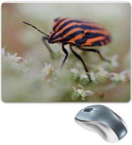 """Коврик для мышки """"Красный жучок        """" - жук, природа, алина макарова, жучок"""