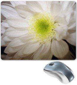 "Коврик для мышки ""Хризантема"" - &цветы, &интерьер, &аксессуары, &хризантема"