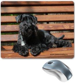 """Коврик для мышки """"Шнауцер"""" - стиль, популярные, в подарок, оригинально, девушке, парню, щенки, puppy, шнауцер, schnauzer"""