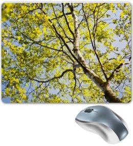 """Коврик для мышки """"Солнечная и теплая весна"""" - весна, небо, листва, алинамакарова"""