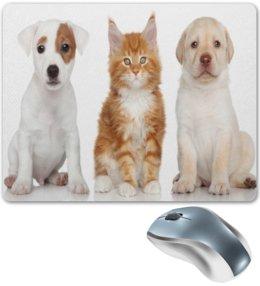 """Коврик для мышки """"Животные"""" - кот, животные, собака, звери, котята"""