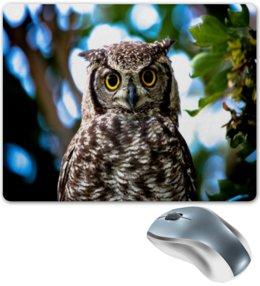 """Коврик для мышки """"Сова в лесу"""" - сова, совы, животные, природа, птицы"""
