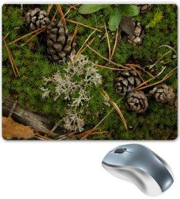 """Коврик для мышки """"Шишки во мху"""" - растение, лес, природа, макро, шишка, мох, болото, болотный, лесной, иголки"""