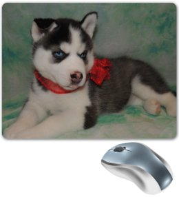 """Коврик для мышки """"Сибирский Хаски"""" - щенок, puppy, husky, сибирский хаски"""