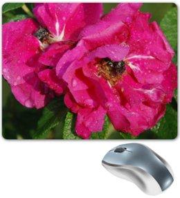 "Коврик для мышки ""Шиповник"" - &цветы, &интерьер, &аксессуары"