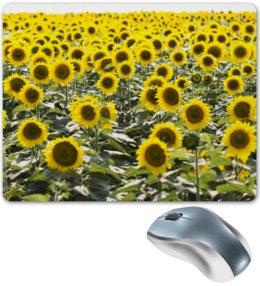 """Коврик для мышки """"Поле подсолнухов     """" - цветы, поле, подсолнухи, алина макарова"""