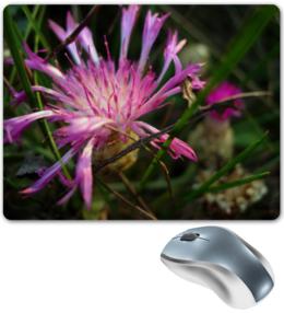 """Коврик для мышки """"Василек"""" - лето, цветок, 8 марта, в подарок, девушке, природа, макро"""
