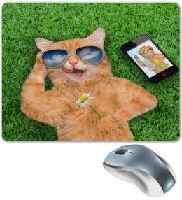 """Коврик для мышки """"Кот в очках"""" - кот, очки, пейзаж, трава, телефон"""