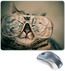 """Коврик для мышки """"Кот в очках"""" - кот, кошка, животные, котенок, очки"""
