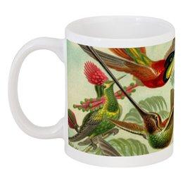"Кружка ""Колибри (Trochilidae, Ernst Haeckel)"" - 14 февраля, 8 марта, птицы, картина, эрнст геккель"