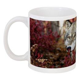 """Кружка """"волк и осень"""" - животные, осень, красота, природа, волки"""