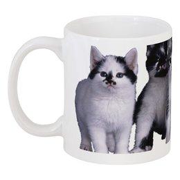 """Кружка """"Котята"""" - кот, милый, чашка, котята"""