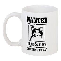 """Кружка """"Кот Шрёдингера"""" - прикольные, коты, наука, кот шрёдингера"""