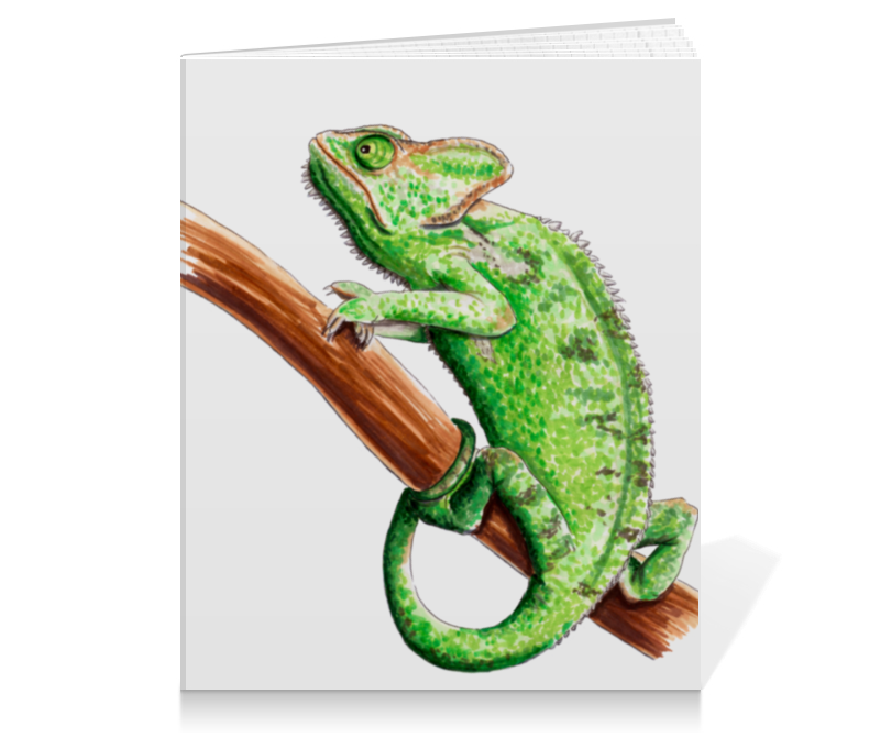 все цены на Тетрадь на клею Printio Зеленый хамелеон на ветке