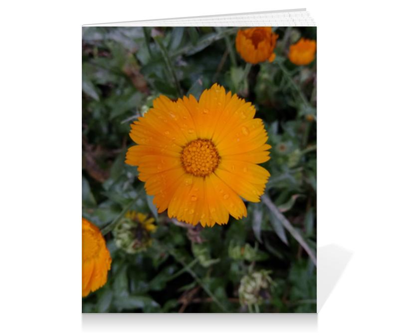Тетрадь на клею Printio Летние цветы