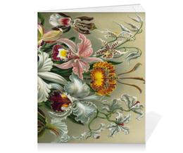 """Тетрадь на клею """"Орхидеи (Orchideae, Ernst Haeckel)"""" - цветы, картина, орхидея, красота форм в природе, эрнст геккель"""