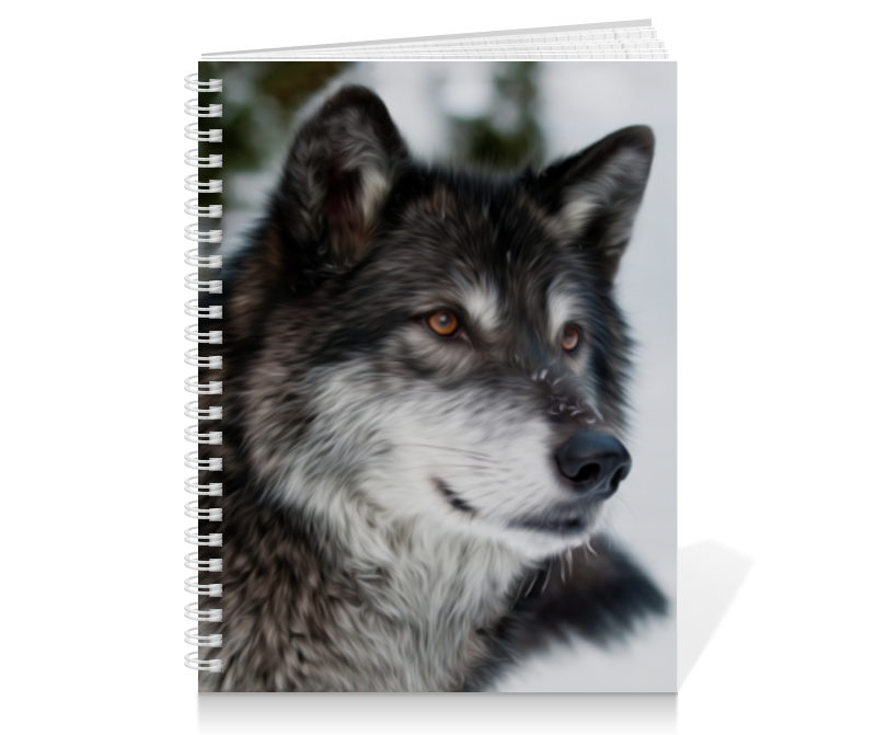 Тетрадь на пружине Printio Серый волк ясон бадридзе волк проблемы связанные с реинтродукцией крупных хищных млекопитающих