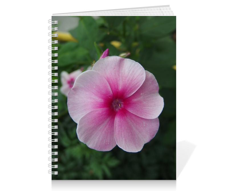 Тетрадь на пружине Printio Цветущая долина эксмо блокнот цветущая сакура